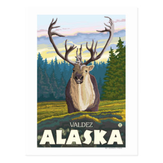 Caribou in the Wild - Valdez, Alaska Postcard