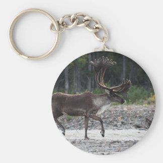 caribou basic round button key ring