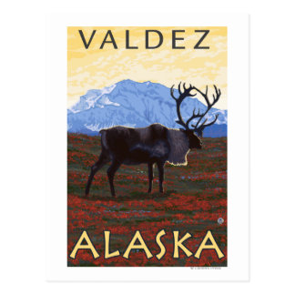 Caribou Scene - Valdez, Alaska Postcard