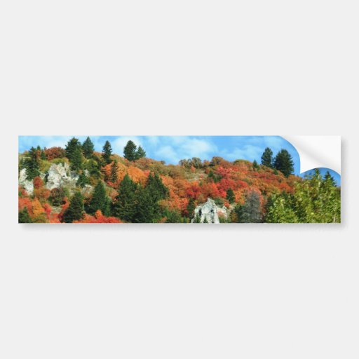 Caribou-Targhee National Forest Bumper Stickers