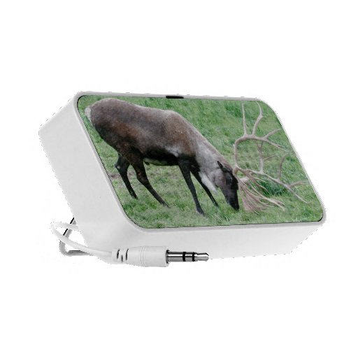 Caribou with Large Antlers Mp3 Speaker