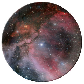 Carina Nebula around the Wolf–Rayet star WR 22 Plate