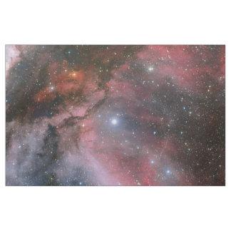 Carina Nebula Fabric