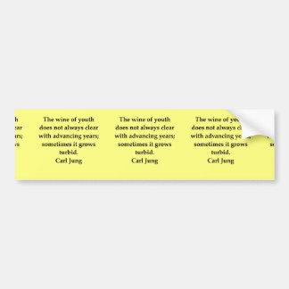 carl jung quote bumper stickers