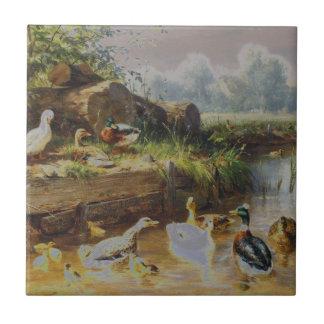 Carl Jutz - Ducks at the Brook (Modified) Tile