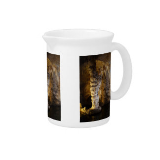 Carlsbad Caverns Drink Pitcher