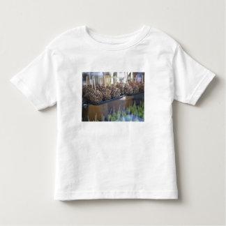 Carmel apples, Pioneer Square, Seattle, Toddler T-Shirt