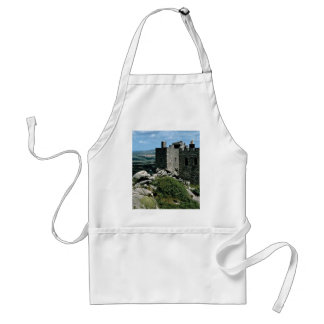 Carn Brea Castle at the Cornish Riviera Standard Apron