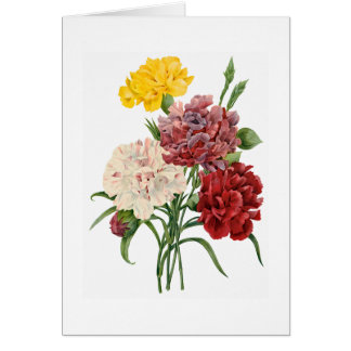Carnation Get Well Soon Greeting Card