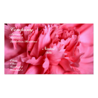 Carnation Pack Of Standard Business Cards