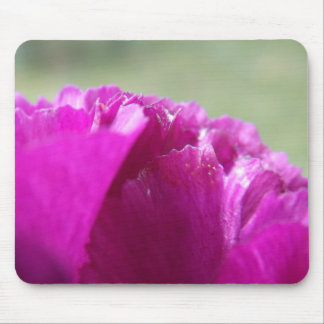 Carnation Petals Mouse Pad