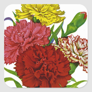 Carnation Vintage Seed Packet Square Sticker