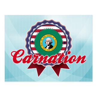 Carnation, WA Postcard