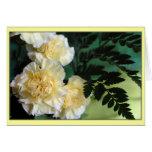 """Carnations"" Greeting Card"