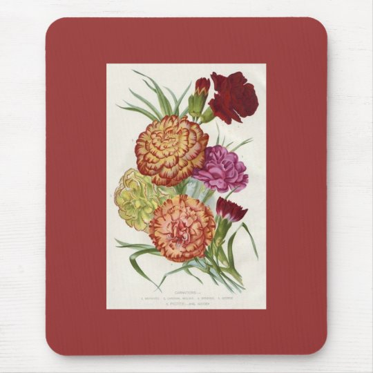 Carnations Mouse Mat