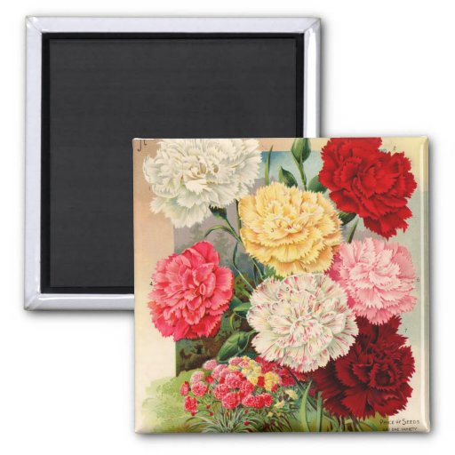 Carnations Seed Packet Magnet