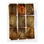 Carnival, Dragonflies, Trees Postcard