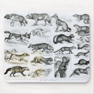 Carnivorous Animals Mouse Mat