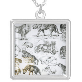 Carnivorous Animals Silver Plated Necklace