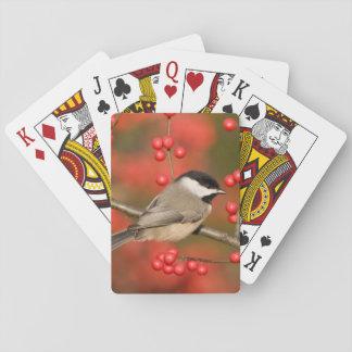 Carolina Chickadee on Common Winterberry bush Poker Deck