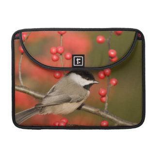 Carolina Chickadee on Common Winterberry bush Sleeves For MacBooks