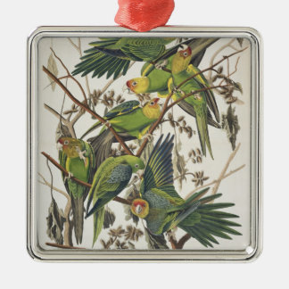 Carolina Parakeet, from 'Birds of America', 1829 Christmas Ornament