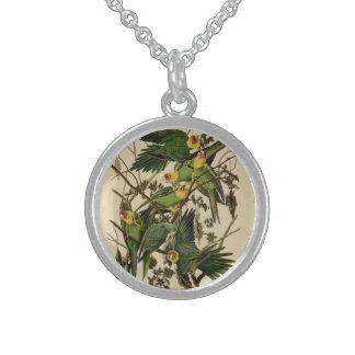 Carolina Parrot Round Pendant Necklace