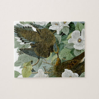 Carolina Pigeon John James Audubon Birds Jigsaw Puzzle