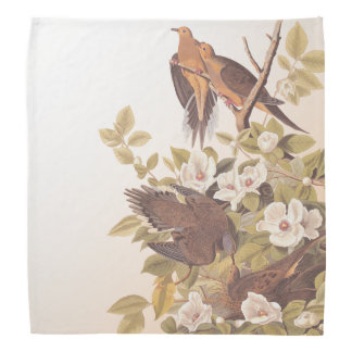 Carolina Pigeon or Mourning Dove Bandana