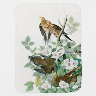 Carolina Turtle Dove, Birds of America by John Jam Baby Blanket