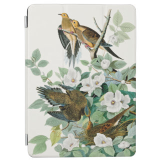 Carolina Turtle Dove, Birds of America by John Jam iPad Air Cover