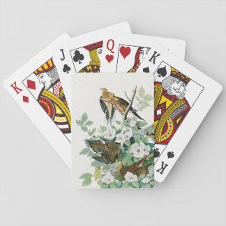 Carolina Turtle Dove, Birds of America by John Jam Playing Cards