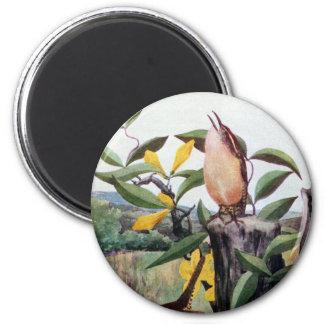 Carolina Wrens and Yellow Jessamine 6 Cm Round Magnet