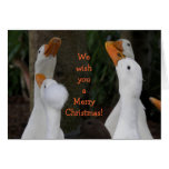 Caroling Ducks Photo Holiday Greeting Card