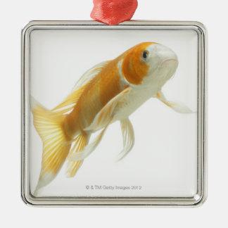Carp (Cyprinus carpio) Christmas Ornament