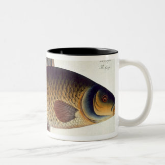 Carp (Cyprinus Carpio) plate XVI from 'Ichthyologi Two-Tone Coffee Mug