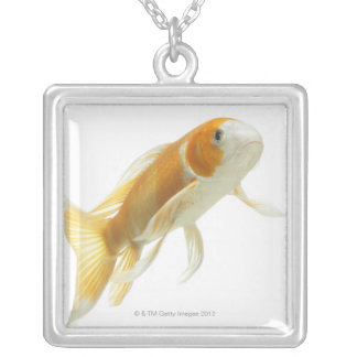 Carp (Cyprinus carpio) Silver Plated Necklace