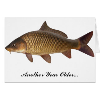 Carp Fishing Birthday Card