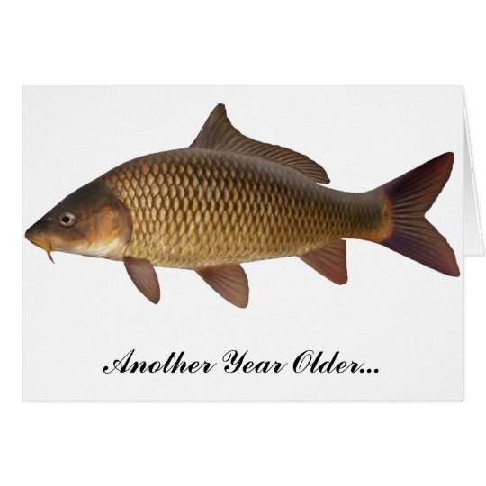 Carp Fishing Birthday Card – Fish Birthday Cards