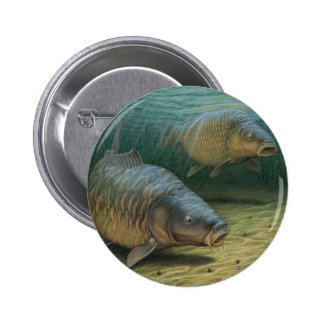 Carp Fishing Two Carp 6 Cm Round Badge