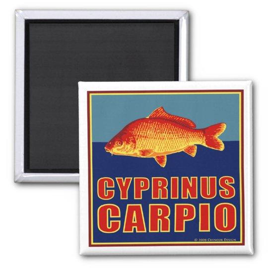 Carp magnet