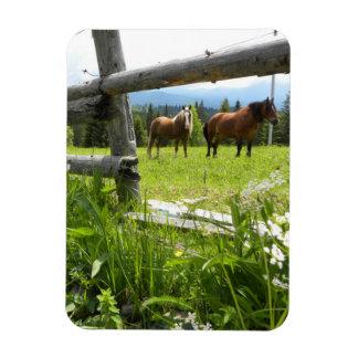 Carpathian Mountains - Ukraine Rectangular Photo Magnet