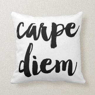 Carpe Diem Brush Typography Statement Pillow Cushions
