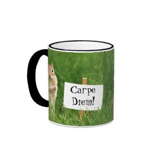 Carpe Diem! Chipmunk with Sign Mugs