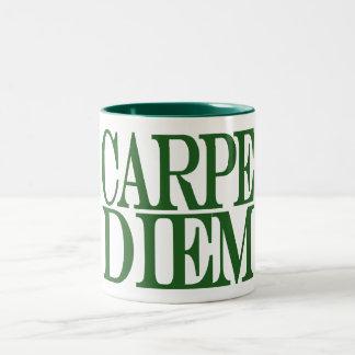 Carpe Diem Latin Quote Mug Mugs