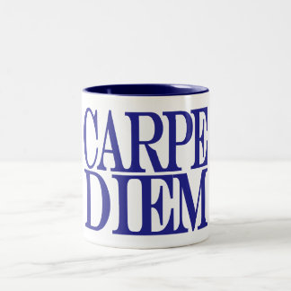 Carpe Diem Latin Quote Mug Mug