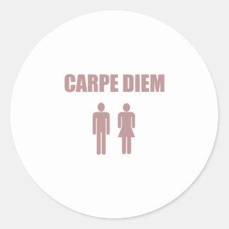 Carpe Diem (pink text boy & girl) Round Stickers