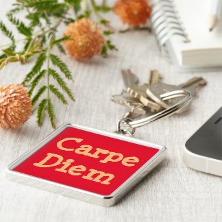 """""""CARPE DIEM/SEIZE THE DAY"""" KEY RING/CUSTOMIZABLE Silver-Colored SQUARE KEY RING"""