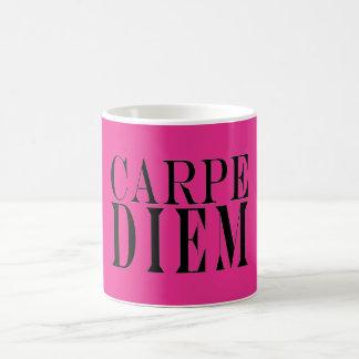 Carpe Diem Seize the Day Latin Quote Happiness Mugs