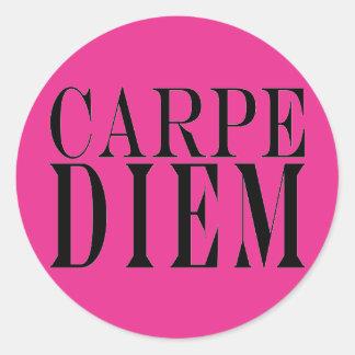 Carpe Diem Seize the Day Latin Quote Happiness Round Sticker